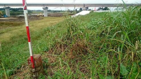 鬼怒川左岸 17.50K 破堤跡