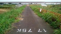 圏央道の橋脚の保護工01