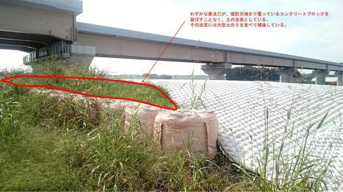 圏央道の橋脚の保護工 裏法面の様子1