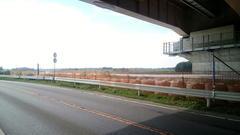 圏央道の橋脚の保護工17