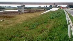 圏央道の橋脚の保護工18